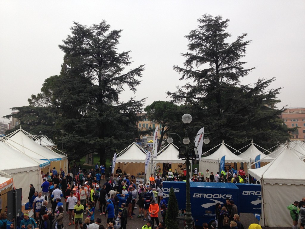 8.30am. We might be marathon runners but still look pretty small compared to those majestic trees.